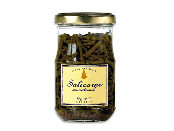 salicorne-naturel-algoplus